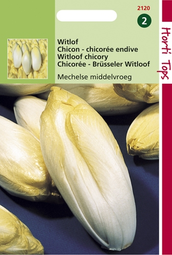 2120 HT Brusselse Witlof Mechelse Middenvroeg 2 gram