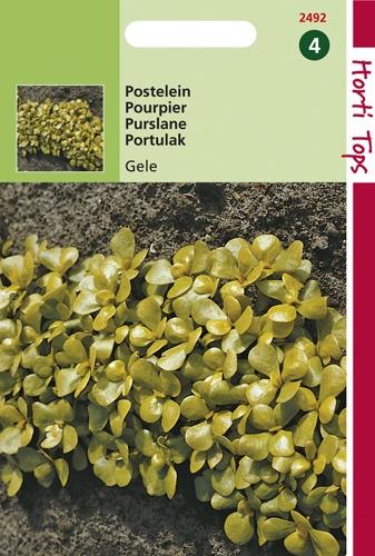 2492 HT Postelein Gele Breedbladige 5 gram