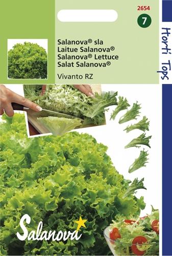 2654 Laitue Salanova® Vivanto RZ  60 graines