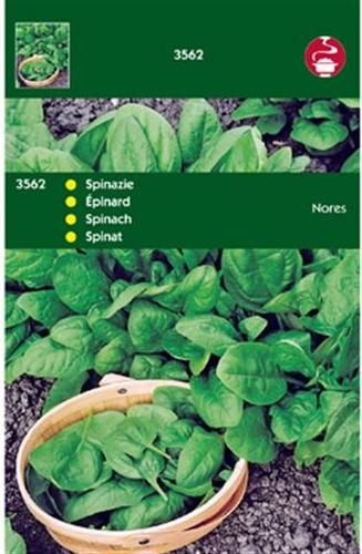 3562 HT Spinazie Nores 100 gram