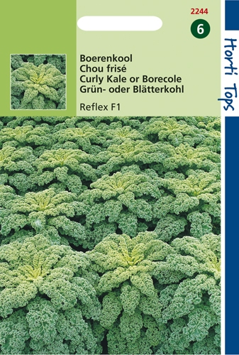 2244 HT Boerenkool Reflex F1 100 zaden