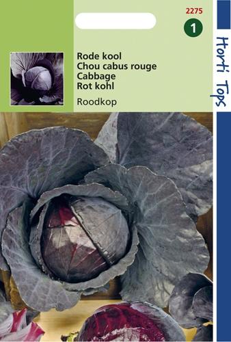 2275 HT Chou cabus rouge Tête noire  2 gramme