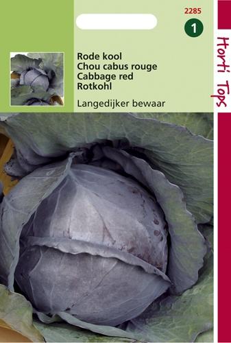 2285 HT Chou cabus rouge Langedijk tarif  2 gramme