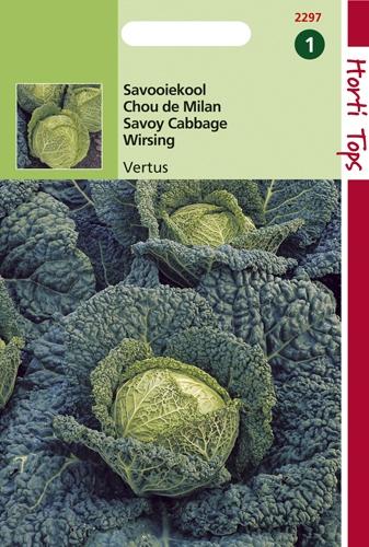 2297 HT Chou de Milan gros des Vertus  2 gramme