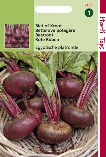 2100 HT Betterave potagère plate d'Egypte  5 gramme