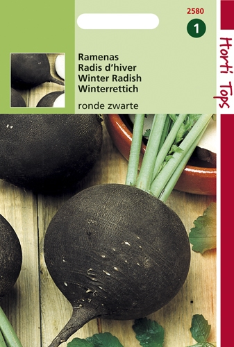 2580 HT Radis d'hiver noir rond  10 gramme