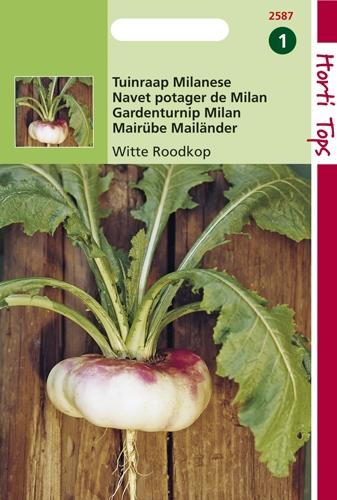 2587 HT Tuinrapen Milanese (Witte Roodkop) 10 gram