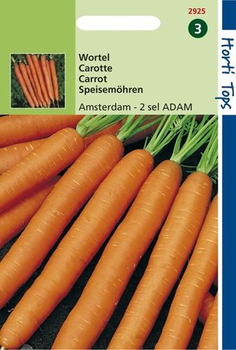 2925 HT Carotte Amsterdam - 2 sel. ADAM  5 gramme
