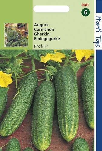 2081 HT Cornichon Profi F1  10 graines