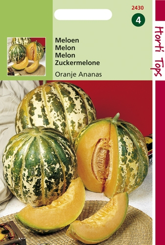 2430 HT Melon Ananas à chair orange  1 gramme