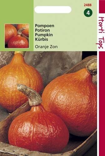 2488 HT Pompoenen Oranje Zon 3 gram