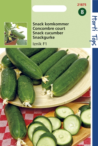 21875 Concombre court Iznik F1  8 graines