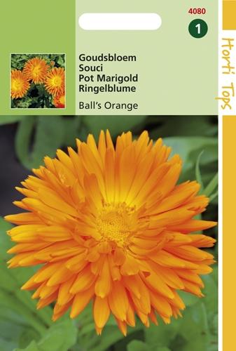 4080 HT Goudsbloem Ball's Orange 2 gram