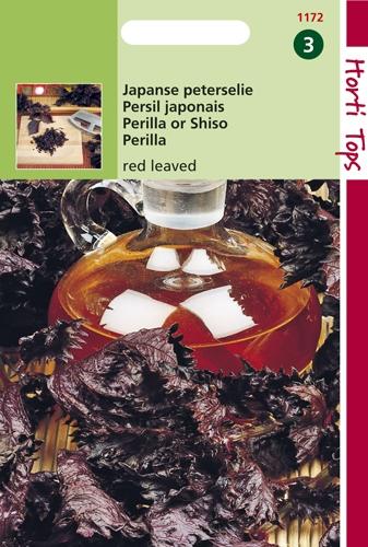 1172 HT Persil japonais à feuille rouge  0,5 gramme