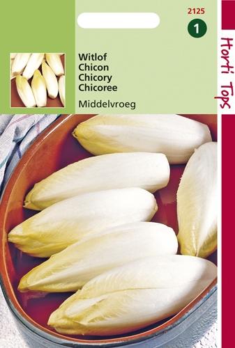 2125 HT Witlof Hollandse Middelvroeg - Edellof 3 gram