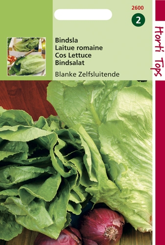 2600 HT Laitue romaine Blonde Maraîchère  3 gramme