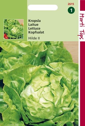 2615 HT Laitue pommée Hilde - type Attraction 3 gramme