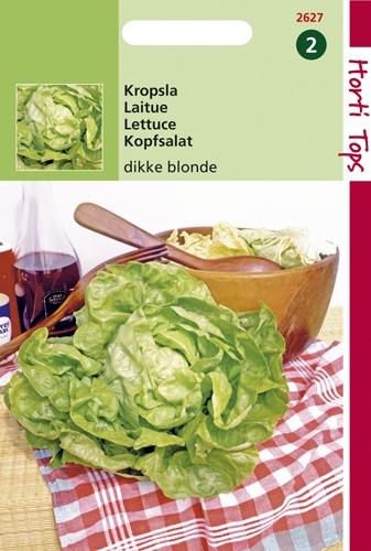 2627 HT Laitue Grosse Blonde  3 gramme