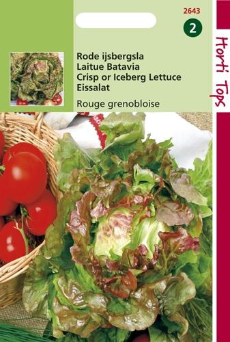 2643 HT Laitue Batavia Rouge Grenobloise  2 gramme