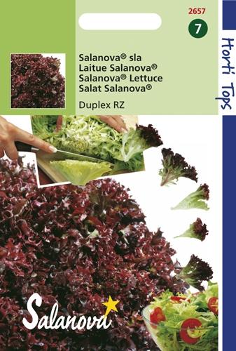 2657 Salanova® Sla Duplex RZ 60 zaden
