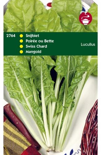 2764 HT Snijbiet Lucullus 20 gram