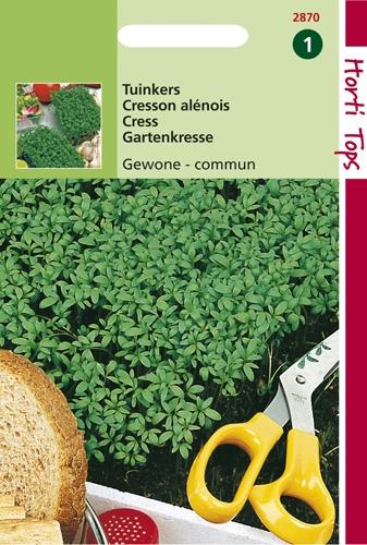 2870 HT Cresson alénois commun  15 gramme