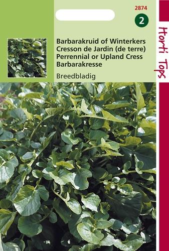 2874 HT Cresson de Jardin (de terre)  3 gramme