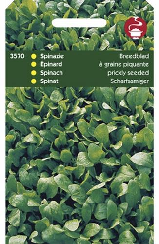 3570 HT Spinazie Breedblad Scherpzaad 50 gram