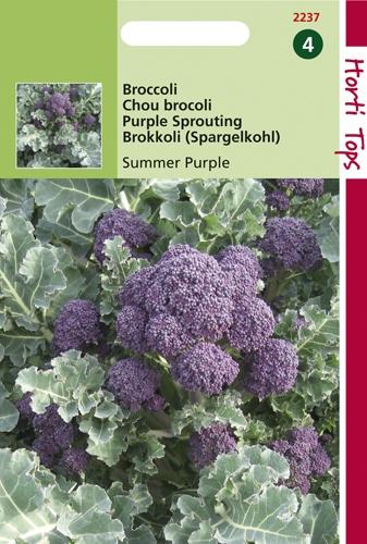 2237 HT Broccoli Summer Purple 1 gram
