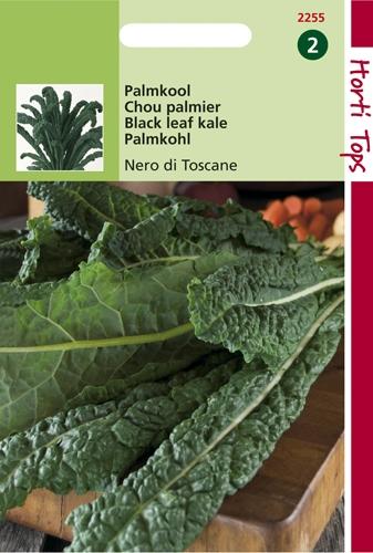 2255 HT Chou palmier Nero di Toscane  2 gramme