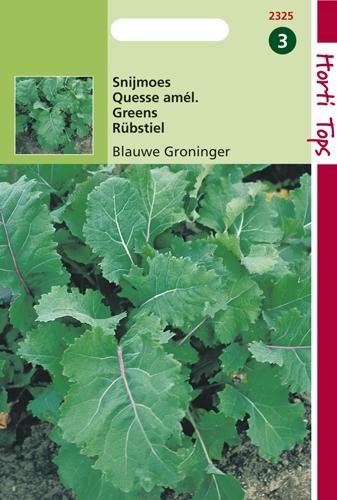 2325 HT Quesse amél. de Groningue  5 gramme