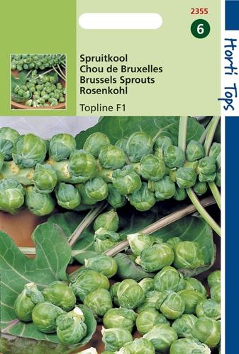 2355 HT Chou de Bruxelles Topline F1  0,6 gramme