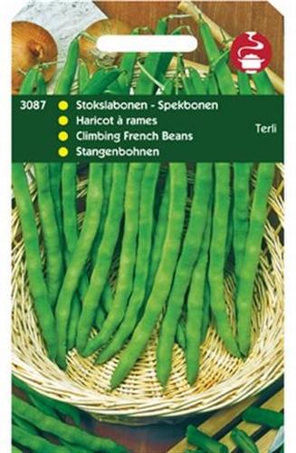 3087 Haricots à rames Terli  100 grammes