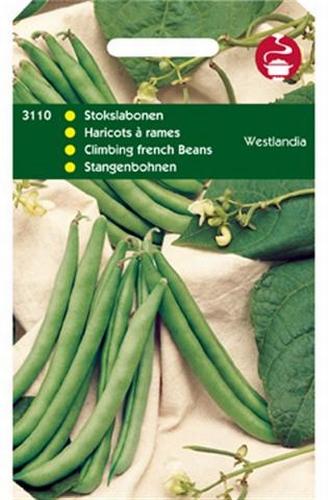 3110 Haricots à rames Westlandia  100 grammes