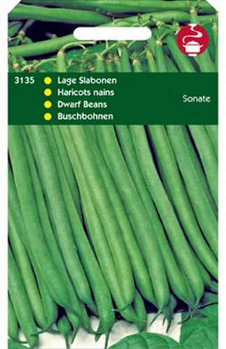 3135 Haricots nains Sonate  50 grammes