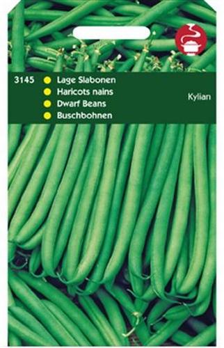 3145 Haricots nains Kylian  50 grammes