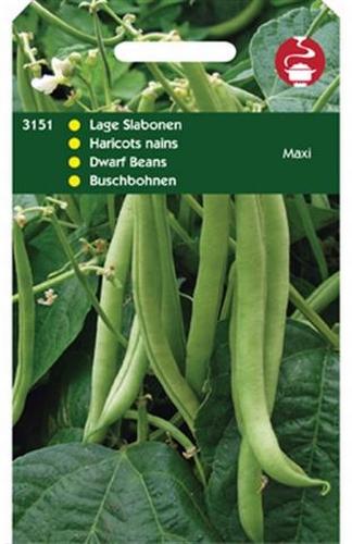3151 Lage Slabonen Maxi 100 gram