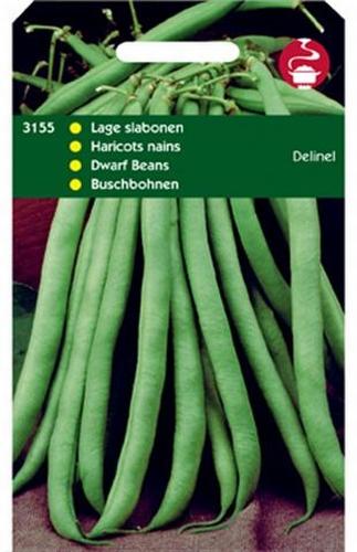 3155 Haricots nains Delinel  100 grammes