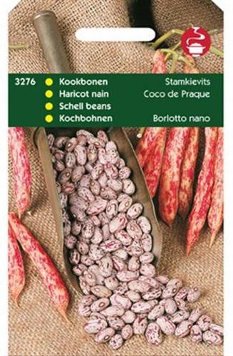 3276 Haricot nain Coco de Praque  100 grammes