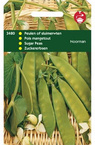 3480 Pois mangetout Noorman  100 grammes