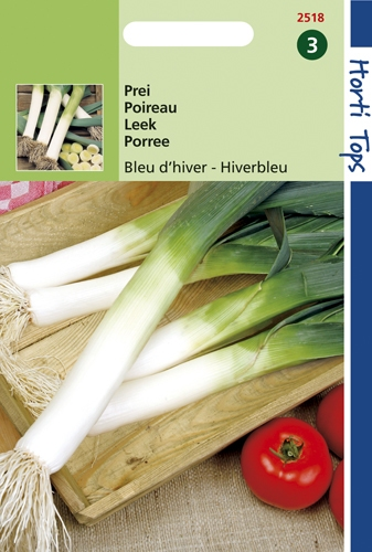 2518 HT Poireau bleu d'hiver  3 gramme