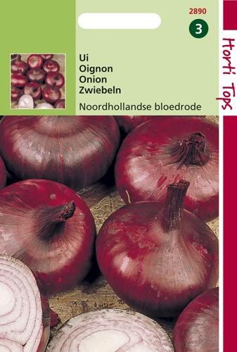 2890 HT Uien Noordhollandse Bloedrode 4 gram