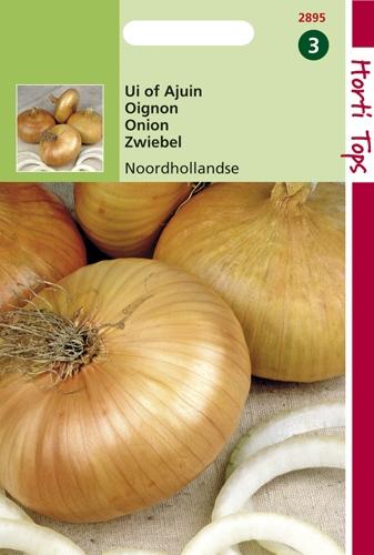 2895 HT Uien Noordhollandse Strogele 4 gram