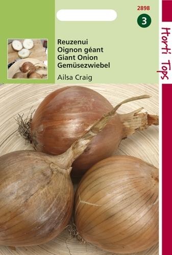 2898 HT Oignon géant Ailsa Craig  2,5 gramme