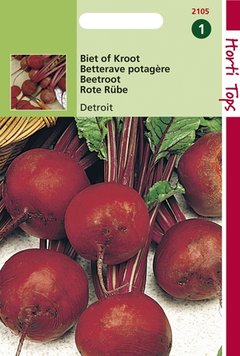 2105 HT Betterave potagère globe 2   5 gramme