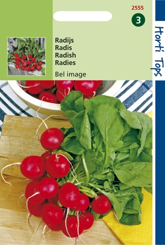 2555 HT Radis Bel image  8 gramme