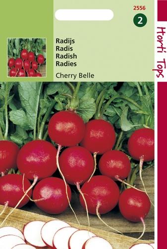 2556 HT Radis Cherry Belle  10 gramme