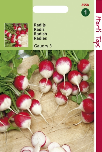 2558 HT Radis Gaudry 3   10 gramme