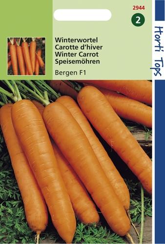 2944 HT Carotte d'hiver Bergen F1  1000 graines