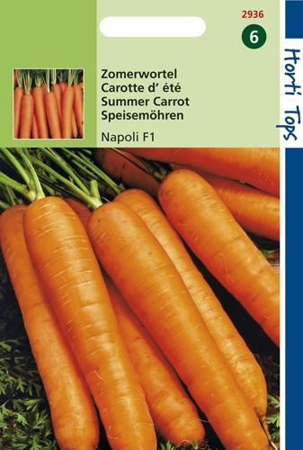 2936 HT Carotte d'été Napoli F1  800 graines
